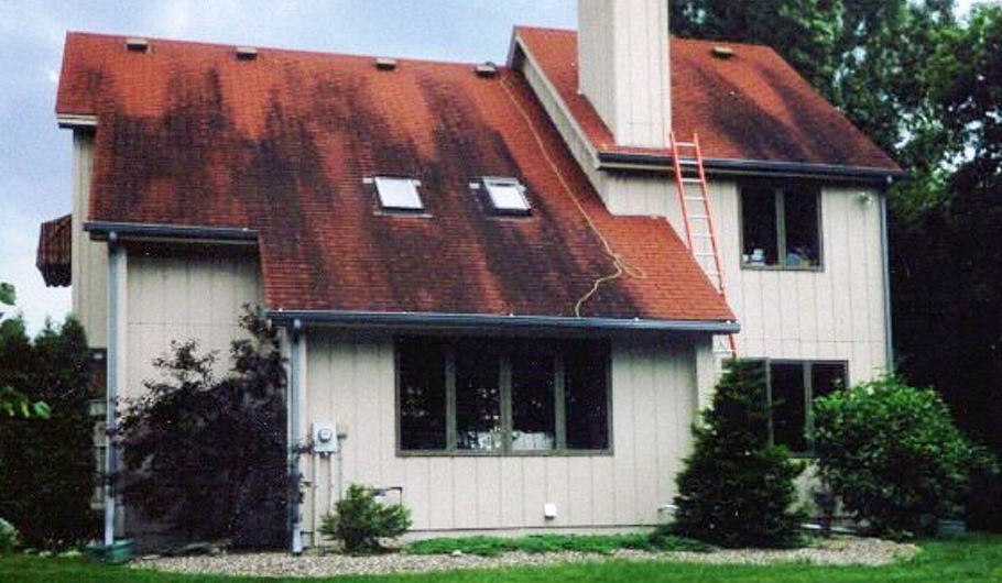asphalt roof cleaners in saint paul