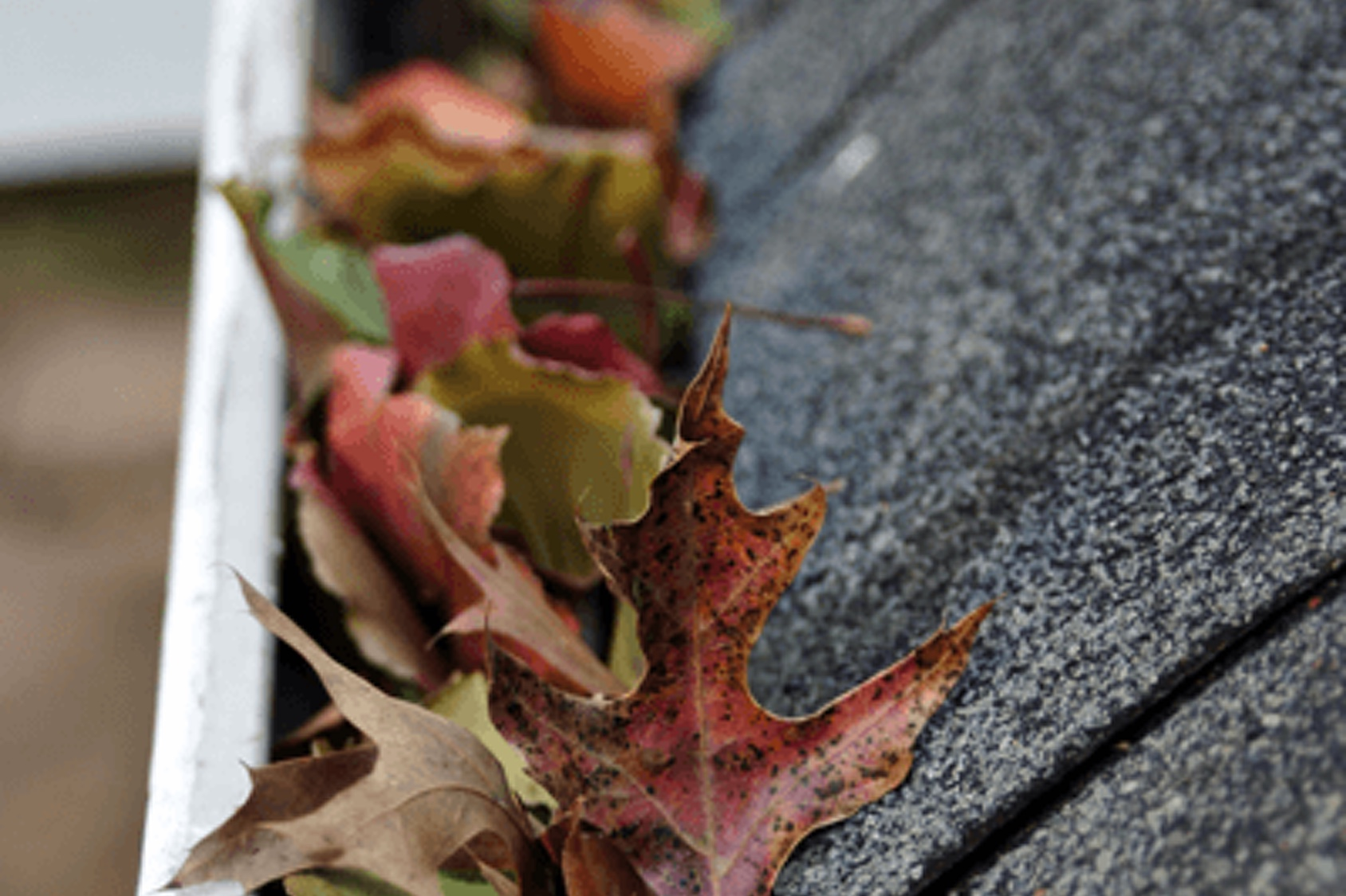 gutter cleaning minneapolis