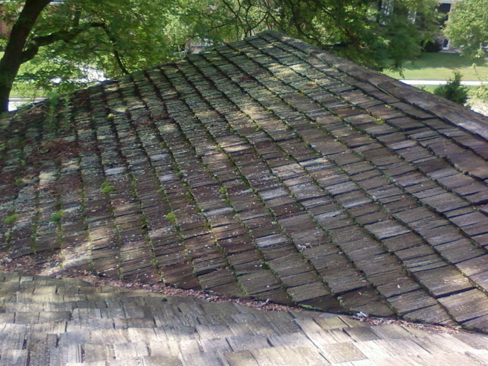 cedar roof power washers in saint paul