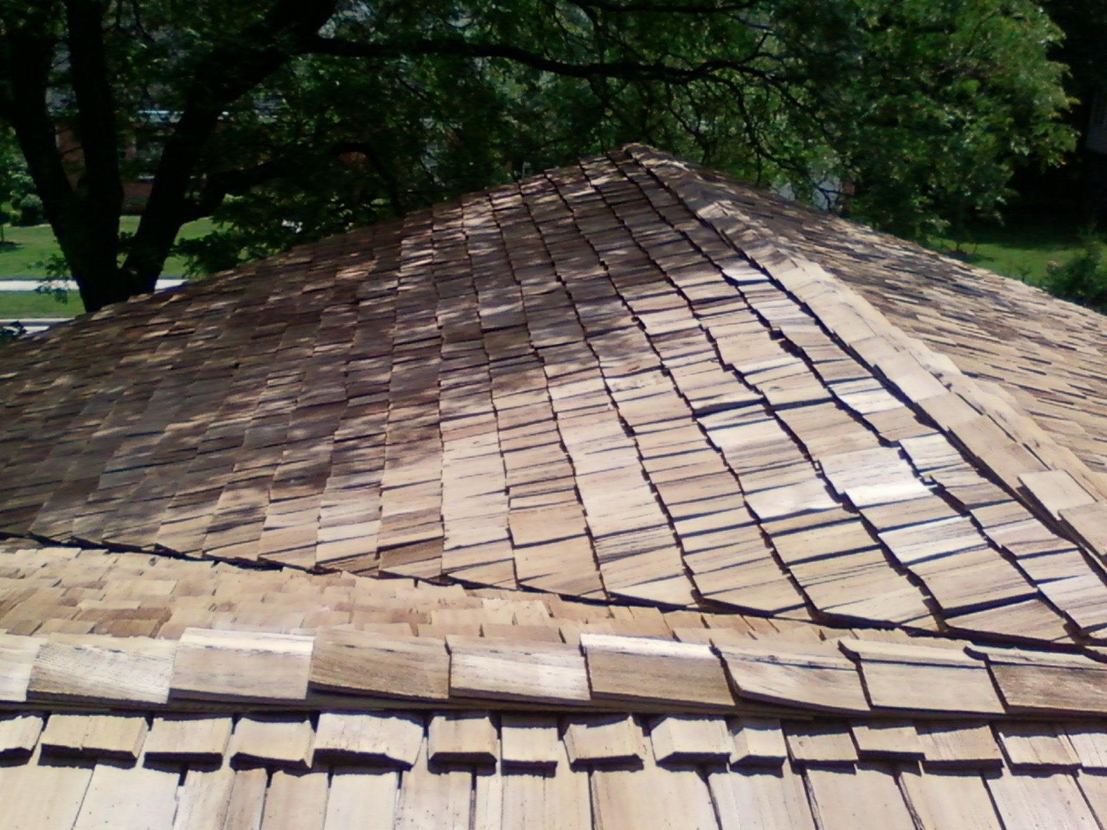 cedar roof cleaning and restoration in saint paul