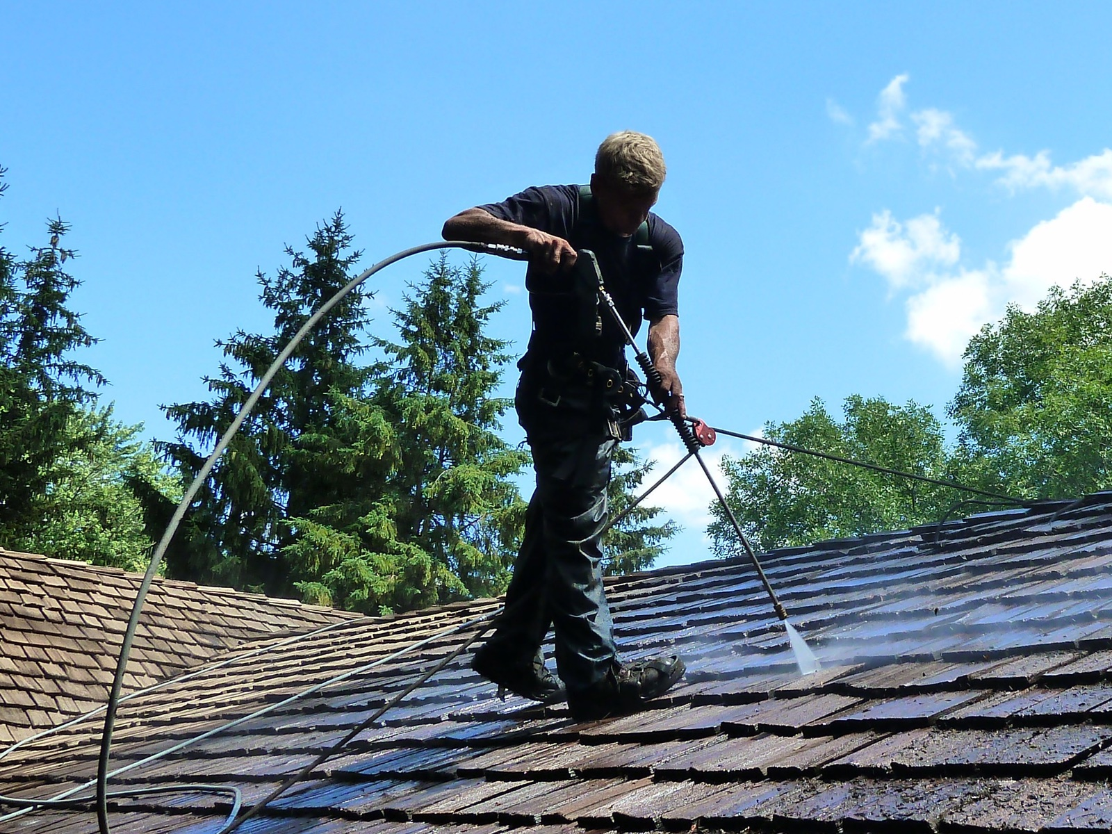 cedar roof cleaning and restoration in minneapolis