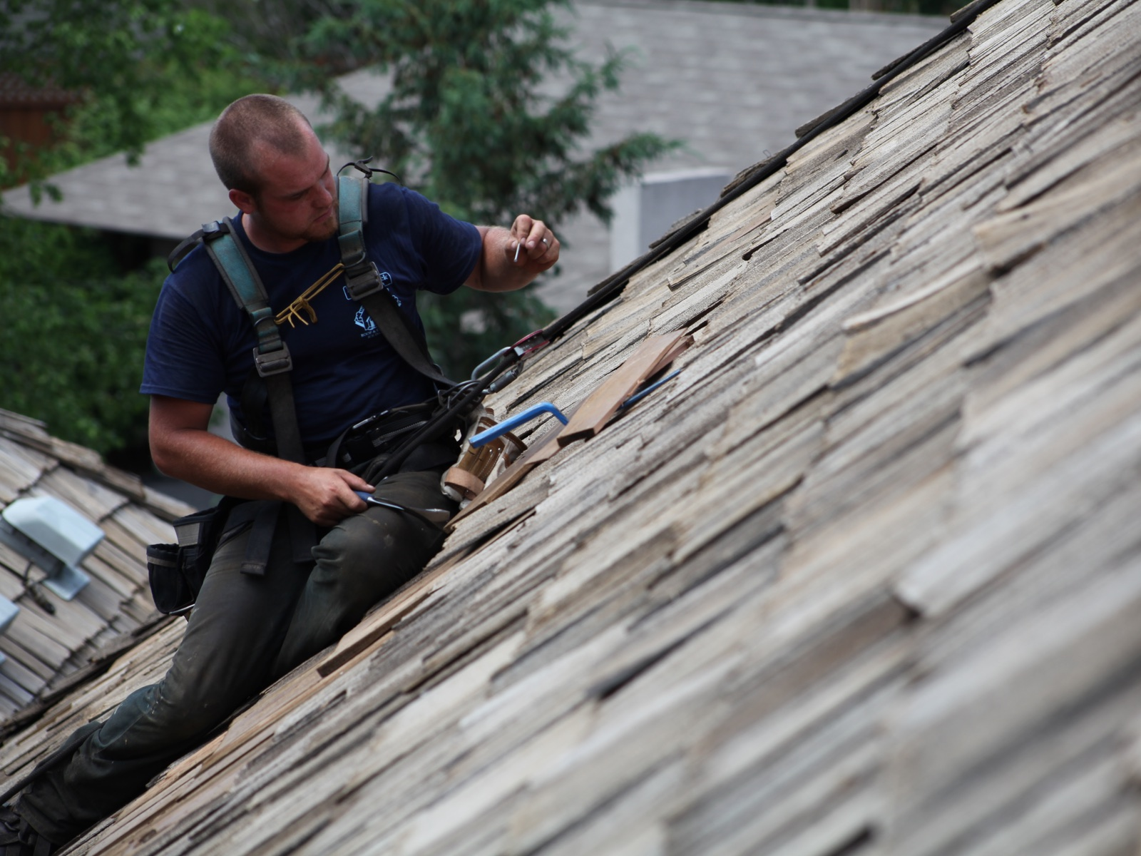 cedar roof cleaner in minneapolis