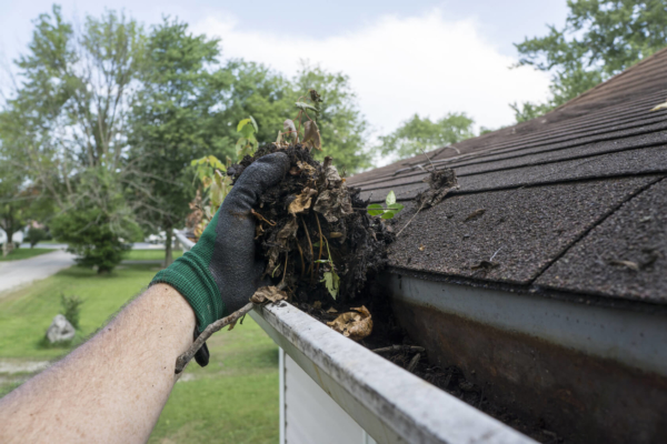 gutter cleaning services in minneapolis