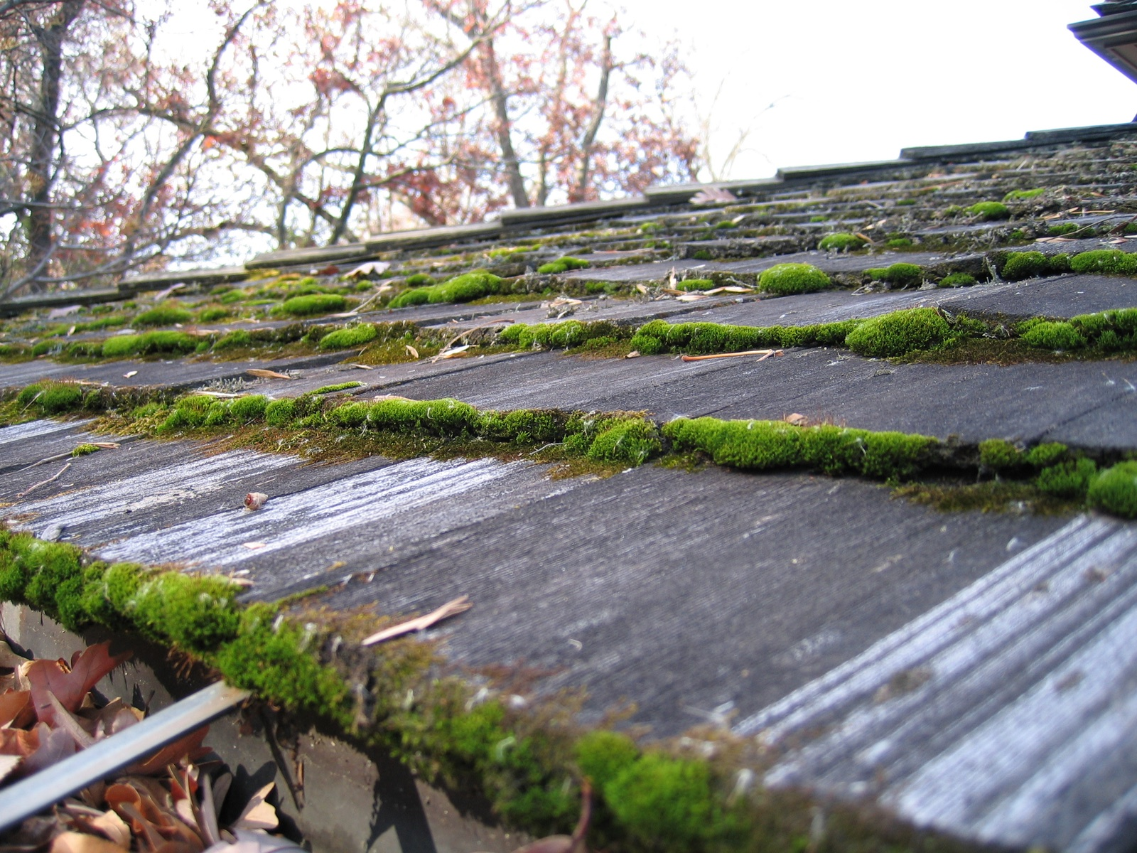 twin cities cedar roof power washing